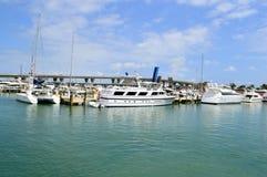 Miami Bayfront park Obraz Royalty Free