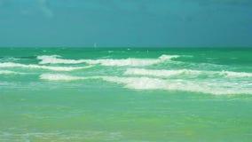 Miami Beach развевает видео сток-видео