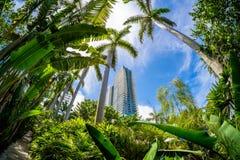 Miami Beach stockbild