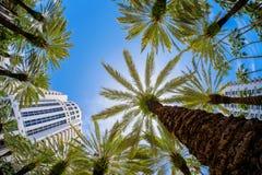 Miami Beach Photo libre de droits
