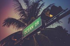 Пальма кокоса против привода океана подписывает внутри Miami Beach Стоковое фото RF
