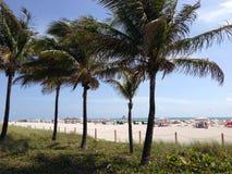 Miami Beach Imagem de Stock