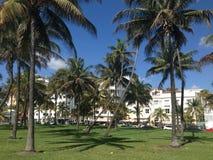 Miami Beach boulevard. With palmtrees Stock Image