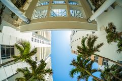 Miami Beach Cityscape Stock Image