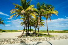Miami Beach Royalty Free Stock Images