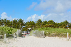 Miami Beach entrance with palm trees Florida US Royalty Free Stock Images