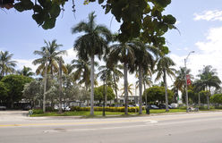 Miami Beach FL,August 09th: Downtown Park from Miami Beach in Florida USA Stock Images