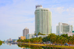 Miami Beach Florida buildings and palm trees. By the water Royalty Free Stock Image