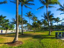 Miami Beach in Florida with luxury apartments and waterway. Miami Beach in Florida with luxury apartments and green grass near waterway Stock Images