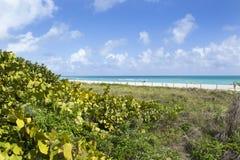 Miami Beach, Florida, USA Stockfotografie