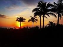 Miami Beach Florida, USA Arkivbild