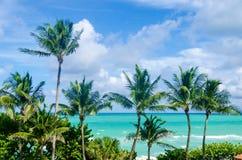 Miami Beach gömma i handflatan Arkivfoto
