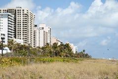 Miami Beach Landscape Royalty Free Stock Photos