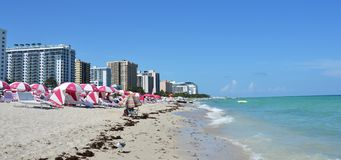 Miami Beach landscape, Florida, USA Royalty Free Stock Images