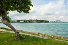 Miami Beach norte Imagens de Stock