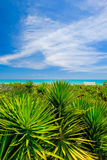 Miami Beach Stock Photos