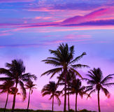 Miami Beach South Beach sunset palm trees Florida. Miami Beach South Beach sunset palm trees in Ocean Drive Florida Stock Image