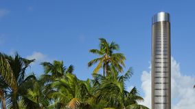 Miami Beach tropical scene stock video footage