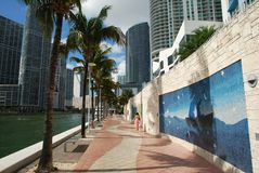 Miami Colours. Colourful pavement of Miami downtown (Florida stock image