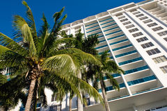 Miami condominium. Low angle view of condominium with palm tree in foreground, Florida, U.S.A stock image