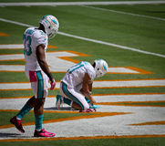 Miami Dolphin's, Daniel Thomas and Brent Grimes Royalty Free Stock Image