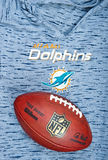 Miami Dolphins imagem de stock royalty free