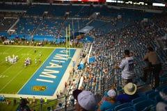 Miami Dolphins sconfigguti Fotografie Stock