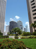 Miami downtown day scene Royalty Free Stock Photo