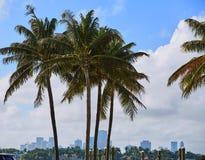 Miami downtown foggy skyline Miami Beach Royalty Free Stock Photography