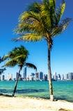 Miami Downtown skyline Stock Image