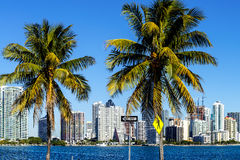 Miami Downtown skyline Stock Images