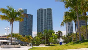 Miami downtown summer day palm park yacht bay 4k florida usa stock video footage