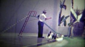 MIAMI, ETATS-UNIS -1951 : Pingouins descendant une glissière dans une piscine ci-dessous banque de vidéos