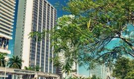 MIAMI - FEBRUARI 25, 2016: I stadens centrum Miami horisont på en solig dag Arkivbilder
