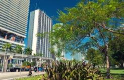 MIAMI - FEBRUARI 25, 2016: I stadens centrum Miami horisont på en solig dag Royaltyfri Bild