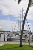 Miami FL,August 09th: Yachts Port from Miami in Florida USA Stock Image