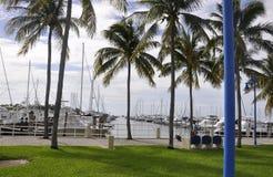 Miami FL, Sierpień 09th: Jachtu port od Miami w Floryda usa Obrazy Stock