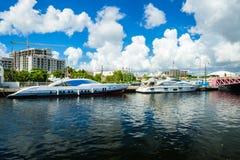 Miami River Cityscape Stock Photo