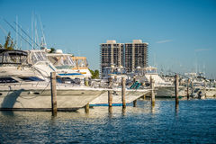 Miami florida beach scenes on a sunny day Stock Photos