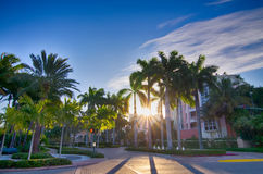 Miami florida beach scenes on a sunny day Stock Images