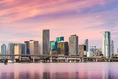 Miami Florida Cityscape Stock Photography