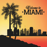 Miami florida design. Palm tree and City icon. Vector graphic Stock Photography
