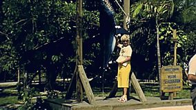 1970s Miami Seaquarium tourists attraction. Miami, Florida, United States - Circa 1979: tourists taking pictures with shark on holiday at Miami Seaquarium in 70` stock footage