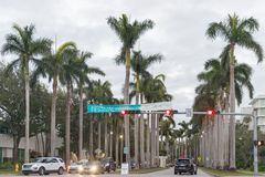 Palm trees at the University of Miami entrance royalty free stock photography