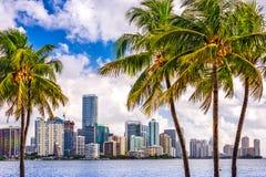 Miami, Florida, USA stockfotos