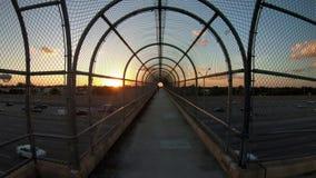Miami highway sunset traffic stock video