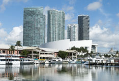 Miami i stadens centrum marina Arkivbild