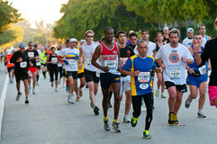 Miami Marathon Runners Royalty Free Stock Photography
