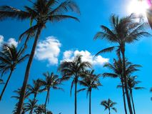 Free MIAMI Ocean Drive Dream Royalty Free Stock Images - 109080869