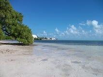 miami plaża w Florida przy zwiedzać zdjęcie royalty free